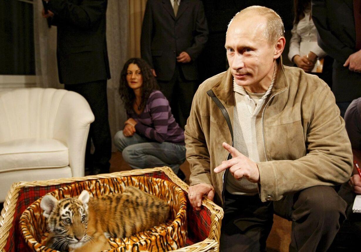 RUSSIA PUTIN TIGER