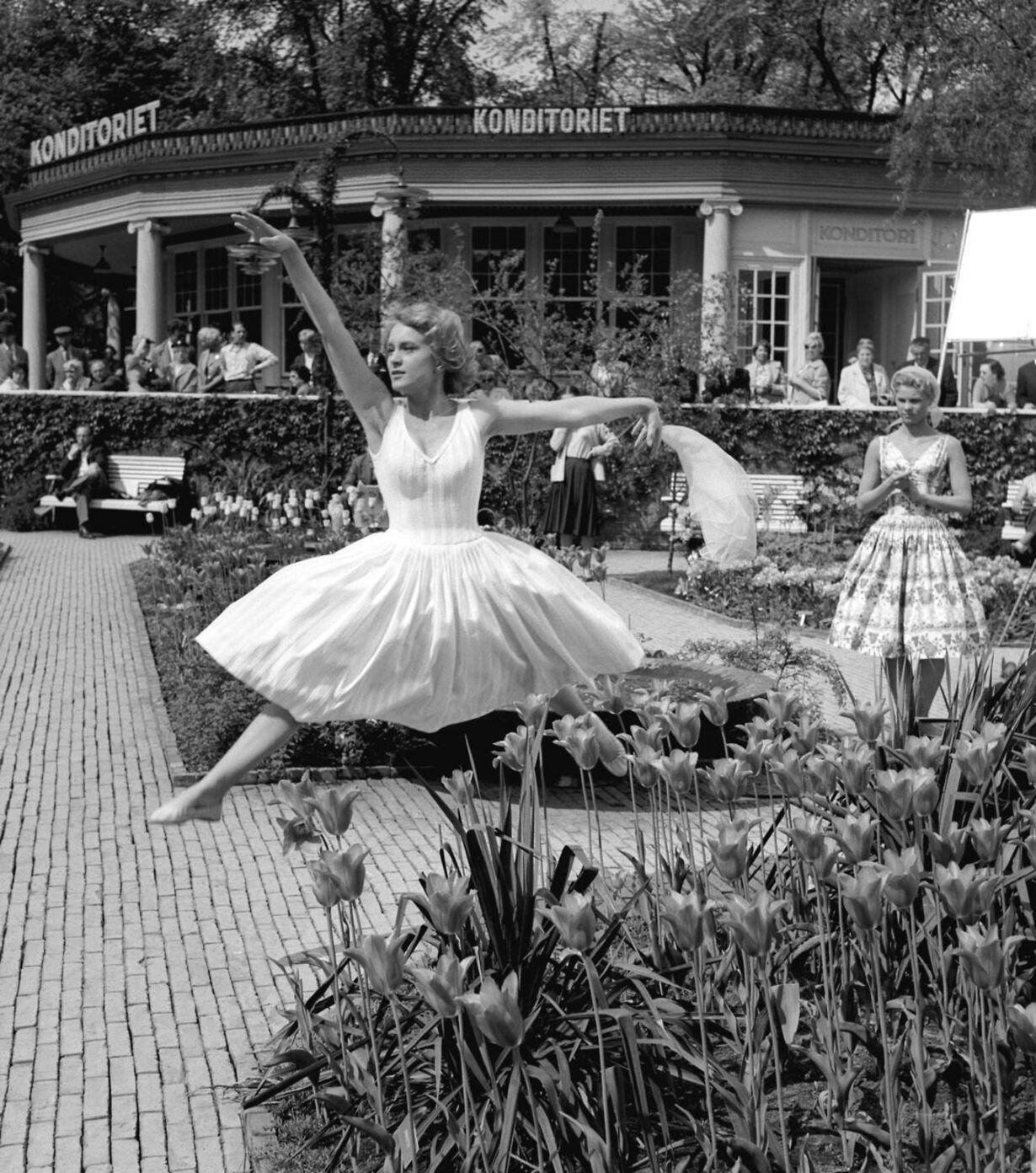 dkdengang - 1960