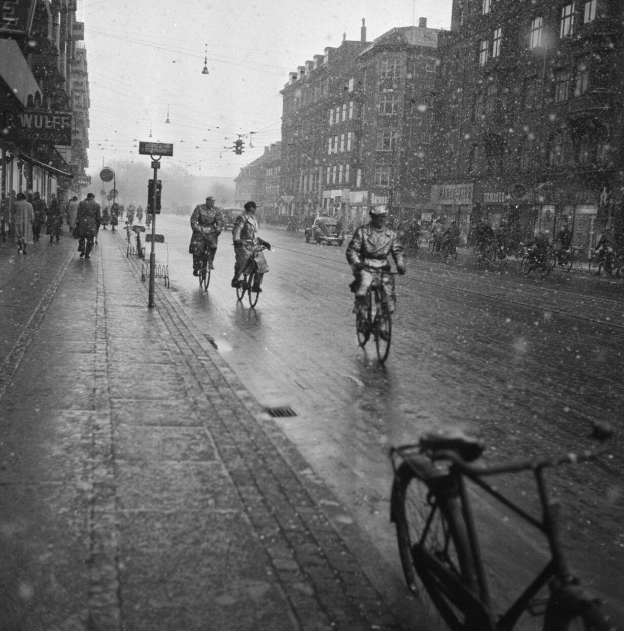 1955 sne