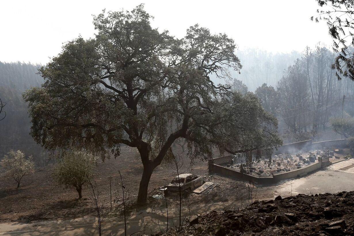 Skovbrand i Portugal