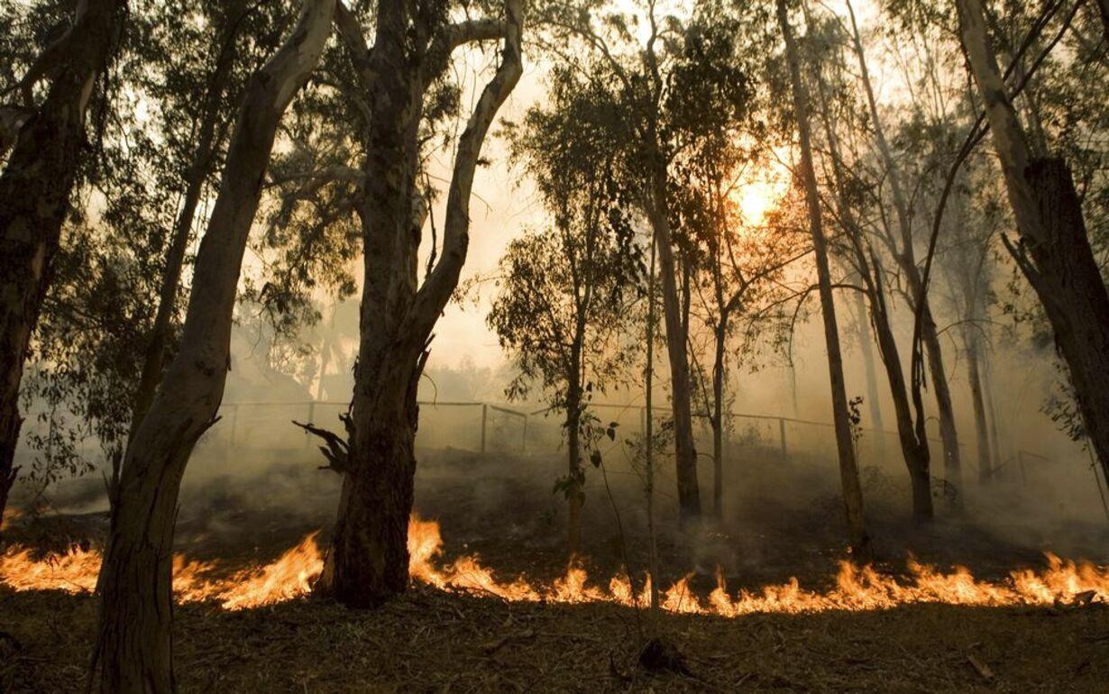 Brand i Californien - opdateret  - 9