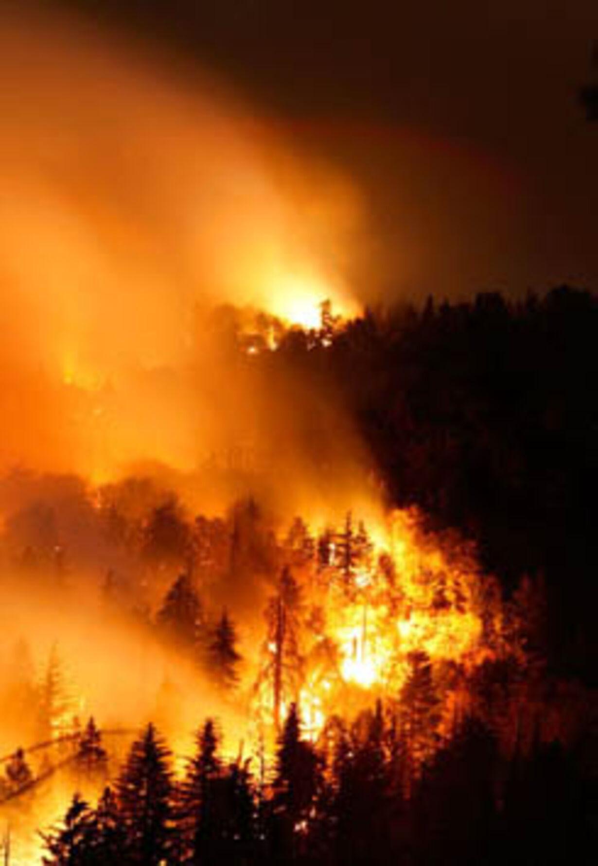 Brand i Californien - opdateret  - 20