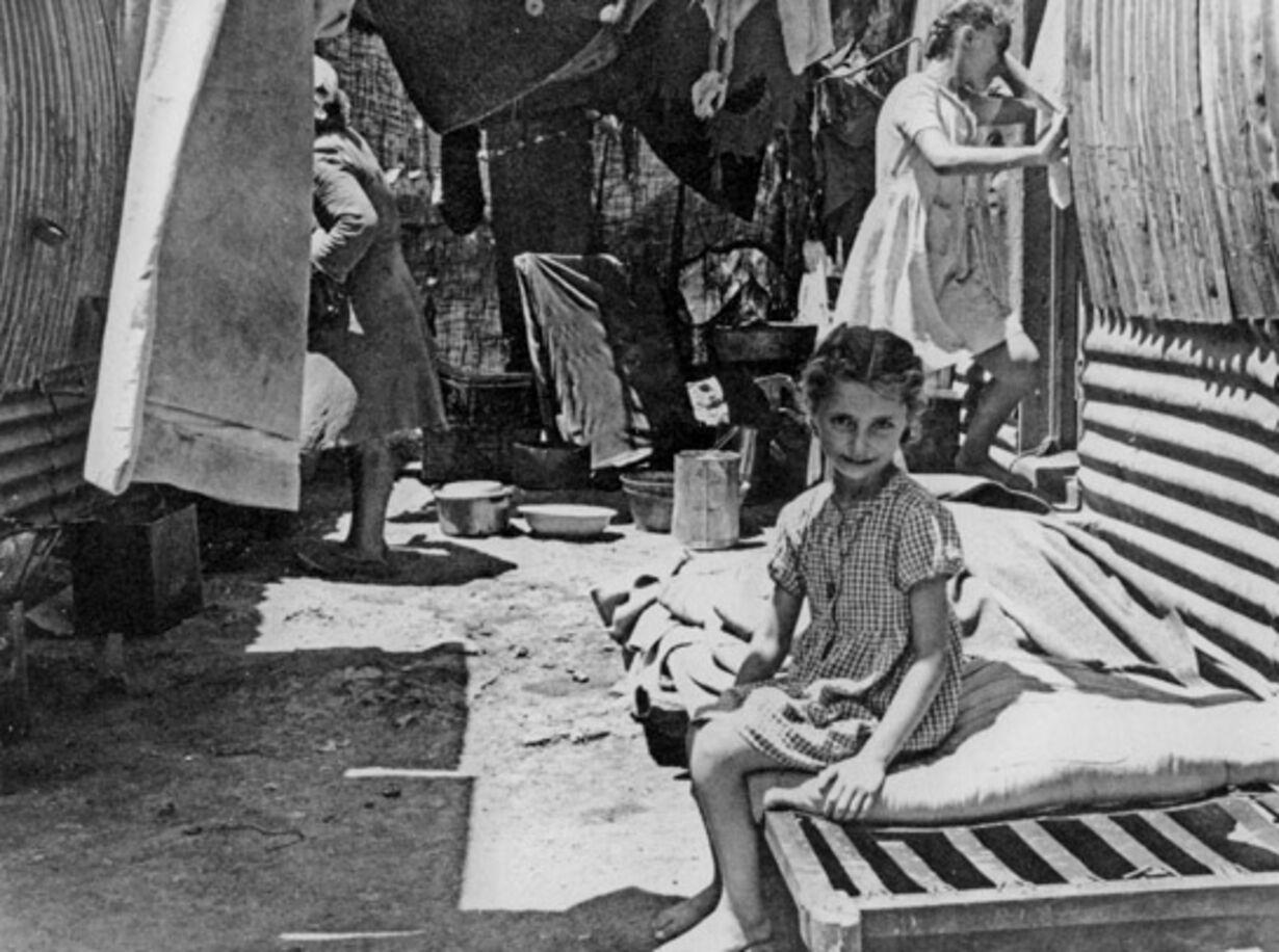 Vidne til det 20. århundredes lidelser - 8