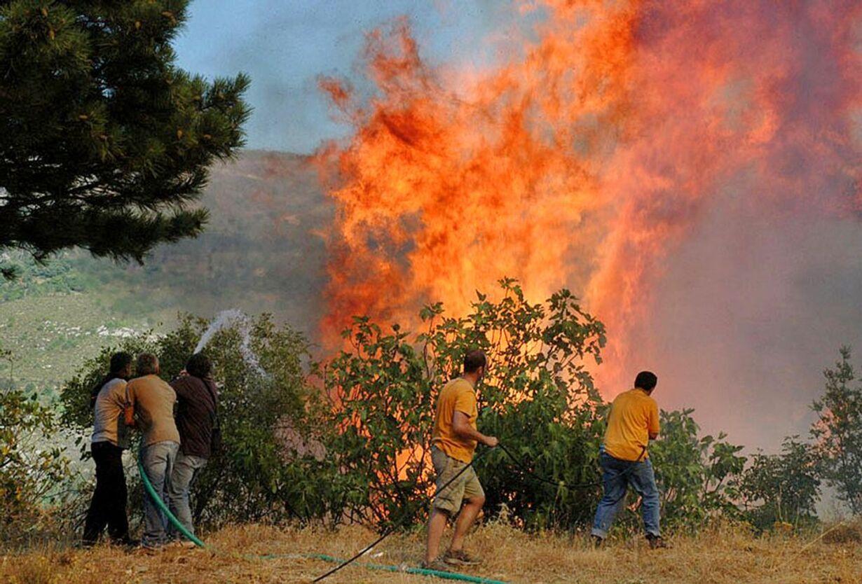 Skovbrande hærger Grækenland - 3