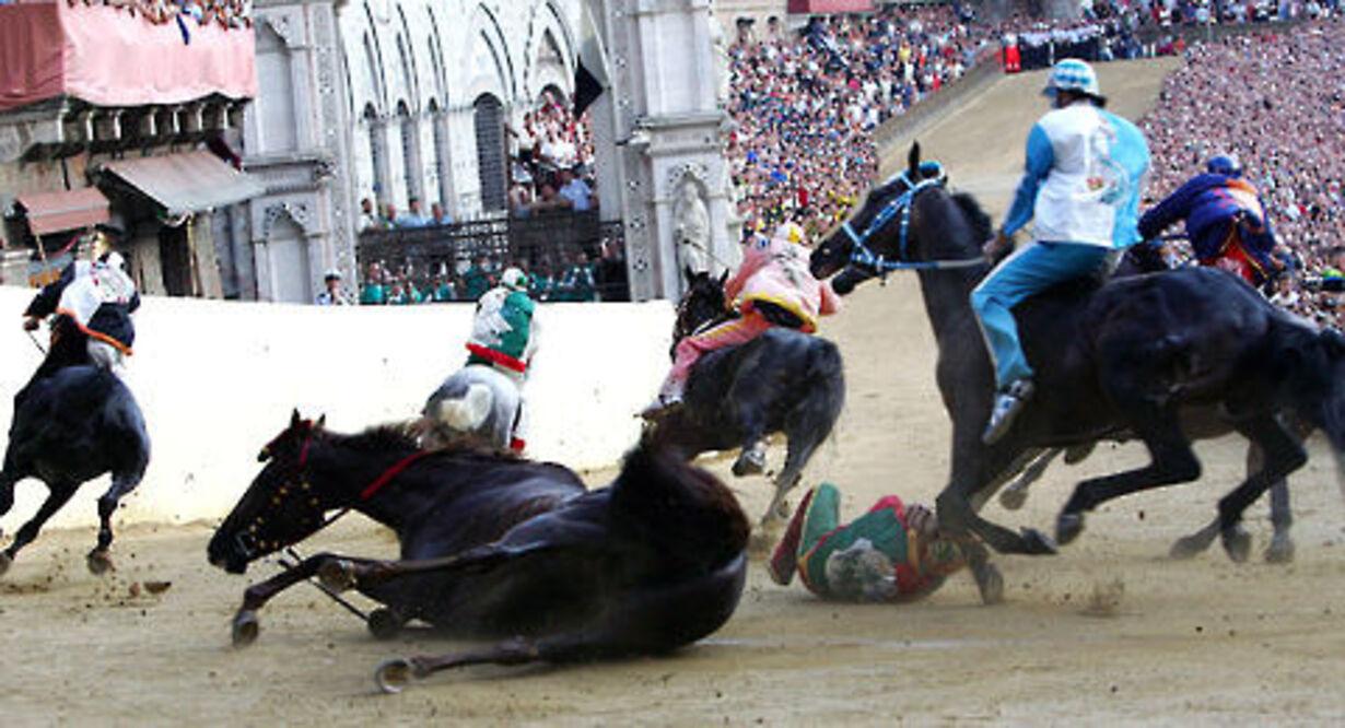 Historisk hestevædeløb på torvet i Siena - 2