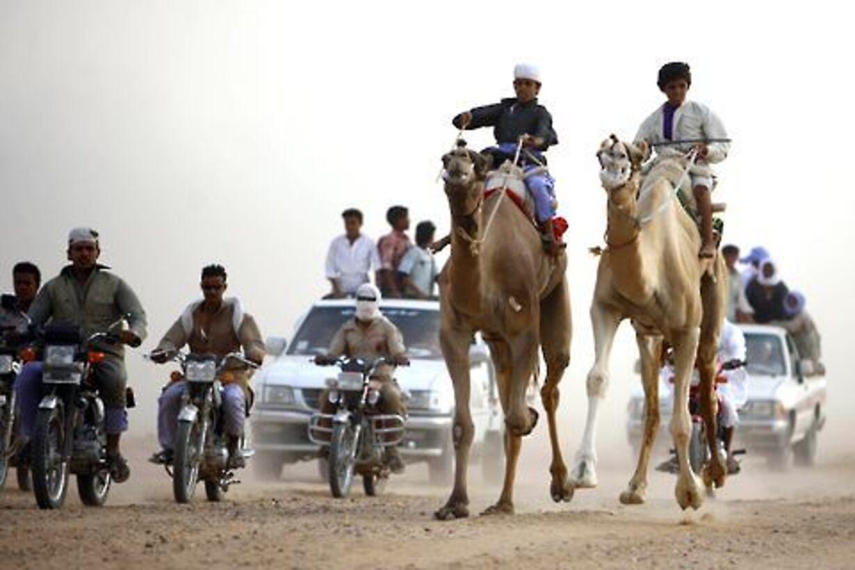 Racerløb på kamelryg - 3