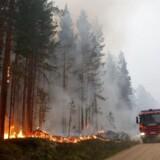 Brandvæsnet på vej ud til Kårböle i det sydlige Hälsingland, hvor der nu er reel risiko for, at en af de fem brande i området spreder sig til et bebyggelsesområde. Myndighederne er derfor i gang med at evakuere borgere i området, skriver Expressen.