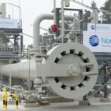 Den russiske Nord Stream 2-gasledning, som en centrale rolle i striden mellem USA og en række europæiske lande som nye USA-sanktioner mod Rusland, der også vil kunne ramme europæiske selskaber, der er med i Nord Stream 2-projektet. EPA/STEFAN SAUER GERMANY OUT