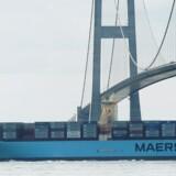 Skibsfart og medicinalproduktion er særlige danske styrkepositioner, og de synes at stå over for særligt stærkt stigende efterspørgsel i fremtiden. Arkivfoto: Erik Refner