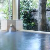 Som ved andre onsen kommer vandet til Sayanoyudokoro fra varme kilder langt under jorden - de medfølgende mineraler siges at give vandet helbredende egenskaber.