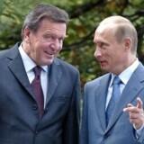 Tysklands daværende kansler, Gerhard Schröder (SPD), og Ruslands præsident, Vladimir Putin, får sig en snak i 2004. EPA/SERGEI ILNITSKY