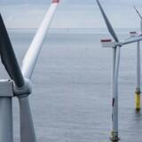 Indvielse af Dongs nye off shore vindmølle park i Borkum Riffgrund.