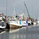 250 norske fiske- og skaldyrsprodukter er fra 1. juli omfattet af lavere importtold i Kina.