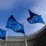 En taskforce i Bruxelles, der bl.a. med den danske regerings fulde opbakning har til opgave at belyse disinformation i russiske medier, er kommet i modvind. Det hollandske parlament vil have lukket enheden, som også er blevet meldt til ombudsmanden.