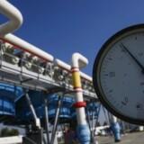 EU-Domstolen har blokeret en mulighed for at sende mere russisk gas til EU via en rørledning gennem Tyskland, men det får ikke den russiske gasgigant Gazprom til at tøve med at bygge en ny rørledning, der skal fragte endnu mere russisk gas gennem Østersøen til Tyskland. Foto: Roman Pilipey