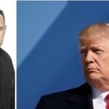 Ingen amerikansk præsident i nyere tid har splittet folk så meget som Donald Trump, men her på etårsdagen for hans indsættelse kan alle blive enige om én ting – han er et fænomen.