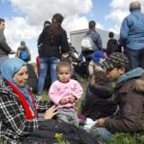 En gruppe migranter holder hvil i vejkanten i august 2015, da et stort antal flygtninge og migranter ankom til blandt andet Rødby og gik ad motorvejen mod København og Malmø.