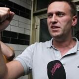 Putins plageånd, den russiske oppositionspolitiker Aleksej Navalnyj, vil have Vesten til at gå efter de russiske oligarker. Her er han fotograferet under samtale med journalister, efter at politiet havde ransaget hans lejlighed i Moskva. Arkivfoto.
