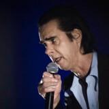 Nick Caves optræden i Royal Arena deler anmelderne. Foto: Sofie Mathiassen
