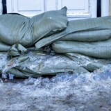 I Roskilde Kommune vil de gerne opføre et dige for at sikre omkring 500 ejendomme i boligområdet Jyllinge Nordmark ved Roskilde Fjord mod stormfloder som dem, der inden for få år har ramt området flere gange.