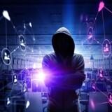 Hackere går fortsat efter danske netsider, men succesraten er lavere. Arkivfoto: Iris/Scanpix