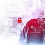 Professionelle hackere har udviklet en professonel forretningsmodel, der gør dem til en enorm trussel på nettet. Foto: Iris