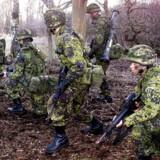 ARKIVFOTO 2003 af øvelse i hæren (Foto: Maria Hedegaard/Scanpix 2012)