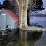 Forhøjet vandstand på Hvidovre Strandvej onsdag aften d. 4. januar 2017, som følge af stormflod. Normalt slutter haven nede ved de fjerneste siv. (Foto: Nils Meilvang/Scanpix 2017)