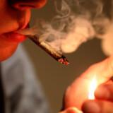 På bare 10 år er andelen af personerne i stofmisbrugsbehandling, der er mellem 18 og 25 år steget fra 25 til 45 procent. Det viser en analyse fra Momentum, der er Kommunernes Landsforenings nyhedsbrev. Analysen er blevet til på baggrund af tal fra Sundhedsdatastyrelsen. Scanpix/Francois Nascimbeni/arkiv