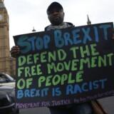 Nogle briter kæmper fortsat for, at det britiske Brexit ikke finder sted. Men de britiske parlamentarikere baner vejen for, at premierminister Theresa May kan opfylde løftet om at meddele EU-udmeldelsen i marts.