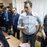Ruslands politiske ledelse i Kreml advarer oppositionen mod at gennemføre demonstrationer til fordel for den fængslede oppositionspolitiker Aleksej Navalnij.