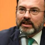 en mexicanske udenrigsminister, Luis Videgaray. Arkivfoto.