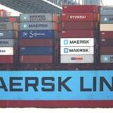 Der er blevet skrottet markant færre skibe blandt containerrederierne i starten af 2018 end de foregående år, og det er med til at øge den samlede flåde på verdenshavene, hvilket gør branchen sårbar over for faldende efterspørgsel. Det skriver analysehuset Alphaliner. Spencer Platt/Getty Images/AFP