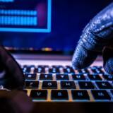 Over 400 danske netsteder blev i september overtaget af hackere. Arkivfoto: Shutterstock/Scanpix