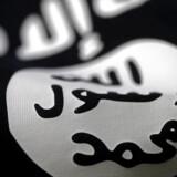 Kvinden rekrutterede folk til Islamisk Stat og opfordrede sine følgere til at udføre angreb i Vesten.