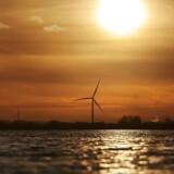 ARKIVFOTO: Satsning på energikilder som sol og vind skaber millioner af nye arbejdspladser verden over.