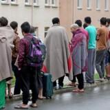 Den tyske delstat Brandenburg har indført en lov, der siger, at asylansøgere, som udsætte for højreekstremistiske hadforbrydelser, får opholdstilladelse.