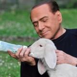 Den tidligere premierminister i Italien, Silvio Berlusconi, optræder denne påske i en kampagen for vegetarisme.