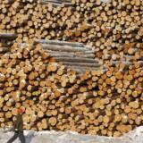 Kæmpe stabel af tømmer i skovdistrikt i den russiske Krasnojarsk region.
