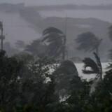 Vind og regn ved Airlie Beach, Australien 28 marts 2017. Cyklonen er forventet at ramme Queenslands nordkyst hen på eftermiddagen.