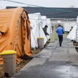 Danmark godkender forholdsmæssigt flere asylansøgninger end det meste af EU.