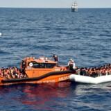 158 bådflygtninge fra Libyen får udleveret redningsveste under en redningsaktion udført af Maltesisk NGO og Røde Kors d. 4. november 2016- - Se RB 6/11 2016 09.59. Danmark bør støtte et tysk forslag om, at indføre en australsk model for flygtninge, siger Martin Henriksen. (Foto: ANDREAS SOLARO/Scanpix 2016)