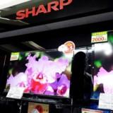 Den japanske TV-producent Sharp, som også producerer mobilskærme, forhandler nu om at blive købt af Taiwans Foxconn, som bl.a. producerer iPhone-telefoner. Arkivfoto: David Chang, EPA/Scanpix