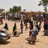 Nigerianske flygtninge ved flygtningelejren Asanga i regionen Diffa. / AFP PHOTO / ISSOUF SANOGO