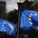 Udenrigskommissær Mogherini siger, at det er i EU's egen interesse at have en succesfuld udvidelsesproces.