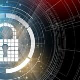 For mange ved for lidt om cybersikkerhed i Danmark, og det skal der øjeblikkeligt rettes op på - både for sikkerhedens skyld og for at udnytte de muligheder, som danske produkter kan få ved at garantere ordentlig sikkerhed, fastslår ny kortlægning. Arkivfoto: Iris/Scanpix
