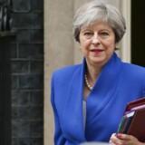 Premierminister Theresa Mays konservative regering har været under pres fra de britiske virksomhedsejeres organisationer. De frygter, at det kan blive en meget dyr omgang for dem, hvis der pålægges told i handlen med det øvrige Europa.