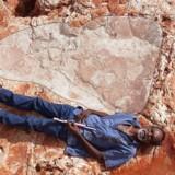 På billedet ligger aborigineren Richard Hunter fra lokalområdet ved siden af det 1,75 meter lange dinosaur-fodspor, som australske forskere har fundet i det vestlige Australien. Foto: Reuters/hand-out.