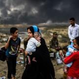 Irakiske flygtninge samles nær byen Qayyarah efter irakiske soldater har fordrevet Islamisk Stat fra millionbyen Mosul. Scanpix/Bulent Kilic