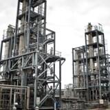 Produktionen af energi på Asnæsværket skal i fremtiden bestå af grøn energi. En aftale, som både Novo Nordisk og Novozymes har indgået med DONG.